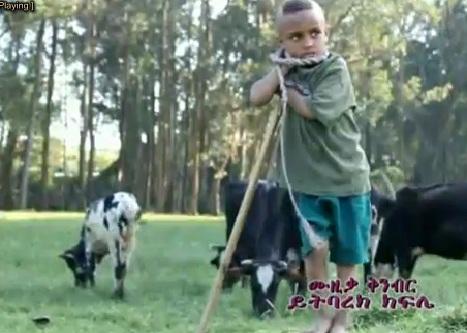 Abere Teneshu [Amharic Music Video]