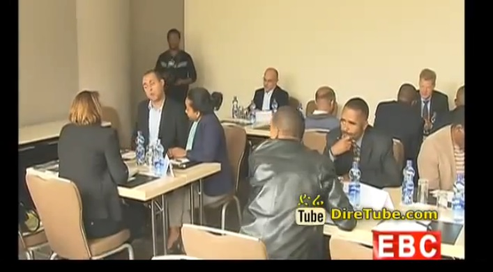 Ethiopian Business Persons Discussing with Swiss Investors