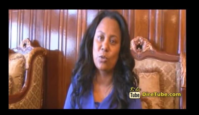 A Public Diplomacy Delegation - Dr.Hirut W-Mariam