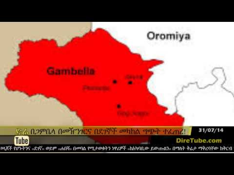 DireTube News - Conflict in Gambella