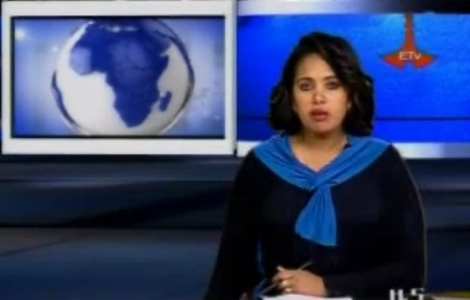 The Latest Amharic News Nov 11, 2013