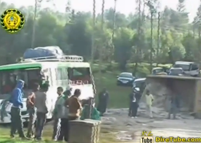 7 People Killed & 24 Critically Injured in Horrific Traffic Accident