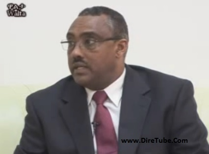 Interview with Deputy PM Demeke Mekonnen