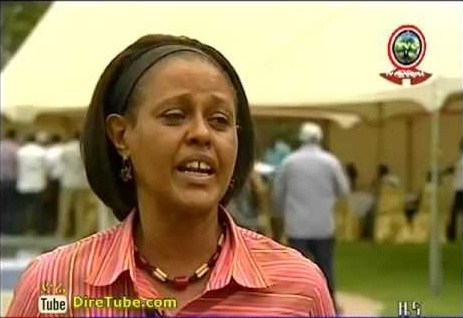 Ethiopian News - Ethiopian Diasporas visiting Development Activities in Ethiopia