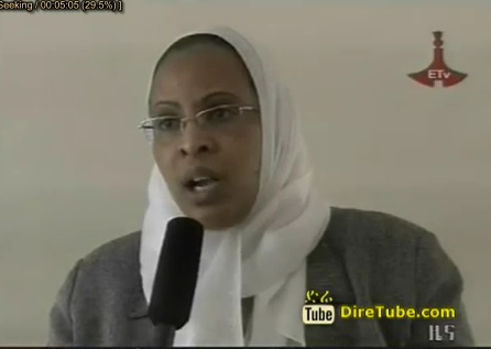 Ethiopian News - The Latest Full 1Pm Amharic News Nov 2, 2012
