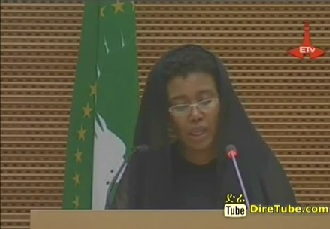 Conference on Establishment of Meles Foundation in Detail
