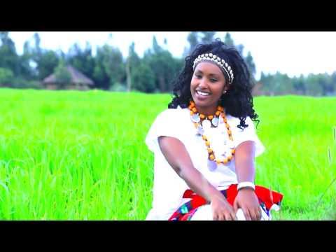 Ariibuu: NEW! Afaan Oromoo Music Video