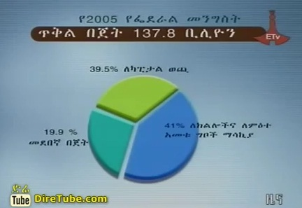 Ethiopia: House discusses federal government budget for 2005EC