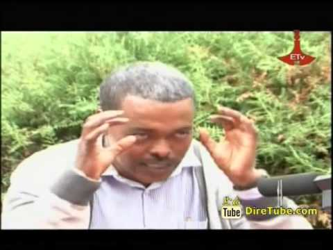Amhara TV - Shimeles Aynalem - Author of the Book Birds of Lake Tana Area