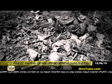 DireTube News - A Mass Grave is found in Harar