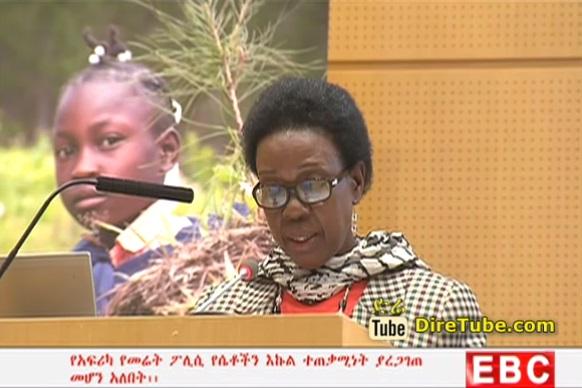 The Latest Amharic News From EBC Nov 12, 2014