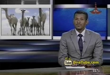 The Latest Full Amharic News Jan 20,2013