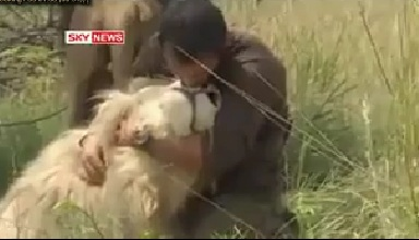 Lion Man Kevin Richardson [Amazing Video]
