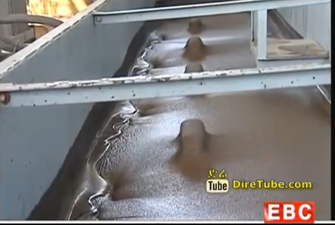 Tendaho Sugar Factory Started its Operation