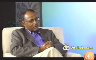 Interview with Professor Lemma Wolde Senbet - Part 2
