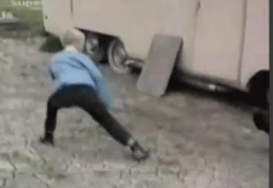 Chicken Chases Karate Kid