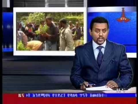 Ethiopian News - The Latest Full Amharic News Aug 14, 2013