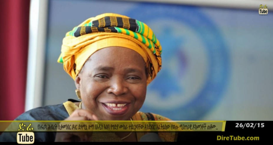 Leaked cable says assassins attempted to kill AU Chair Dlamini Zuma