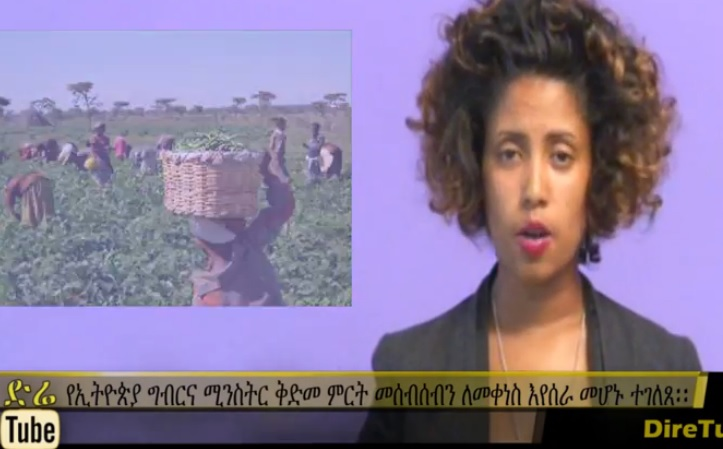 Ethiopia Striving To Minimize Post-harvest Crop Losses