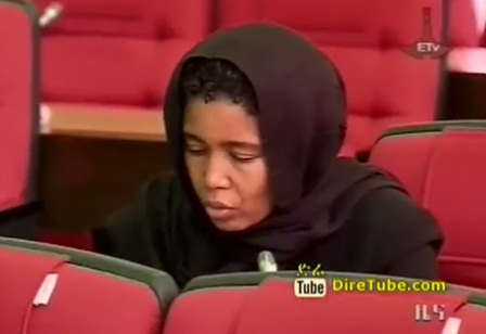 The Latest Amharic News from ETV - Dec 24, 2012