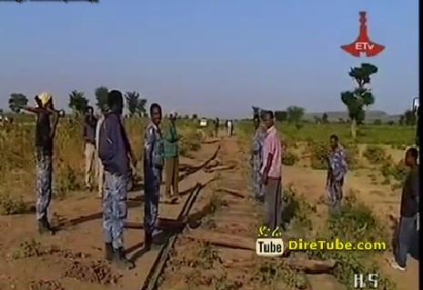 Robbers of The Ethio-Djibouti Railway Equipment are in Custody