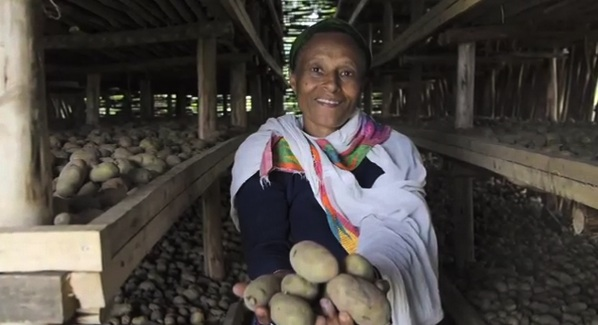 Save a Spud - In Ethiopia, a potato storage facility means hope