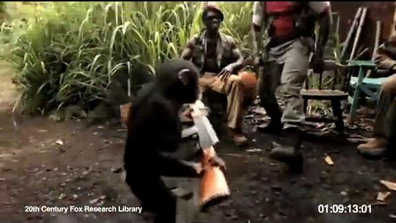 Monkey shooting AK-47 Between Soldiers in Africa!!!
