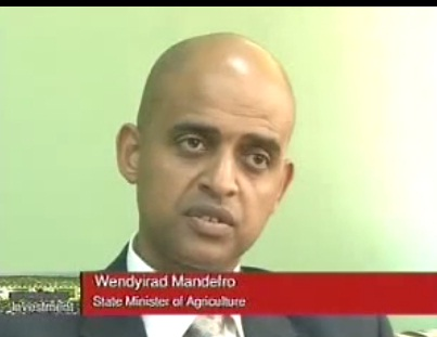 Agro Investment in Ethiopia