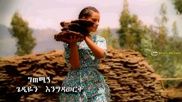 'Getemegn' [New!Ethiopian Music Video]