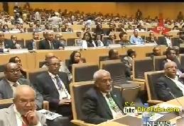 Board Members named for Meles Foundation