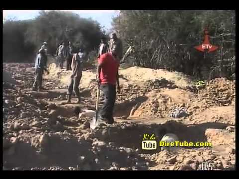 43 Ethiopians, suffocated in truck smuggle buried today