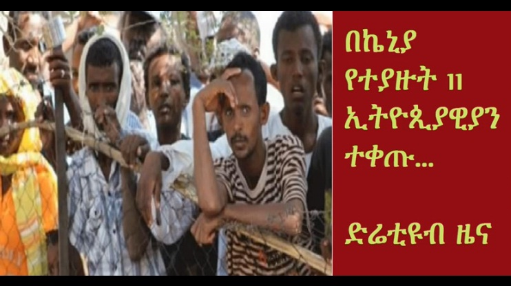 DireTube News - 11 Ethiopian immigrants fined for illegal entry