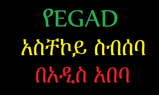 An Urgent EGAD Meeting to be held in Addis Today - Sheger 102.1