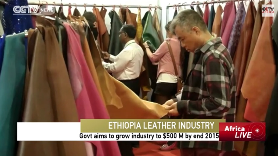 Ethiopia Govt Aims to Grow Leather Industry to $500 Million by end 2015