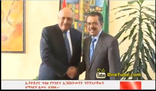 5th Bilateral Meeting - Ethiopia & Egypt to Enhance Trade and Investment Relations