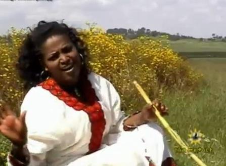 Hod Yefegew [ Bahelawi Music video]
