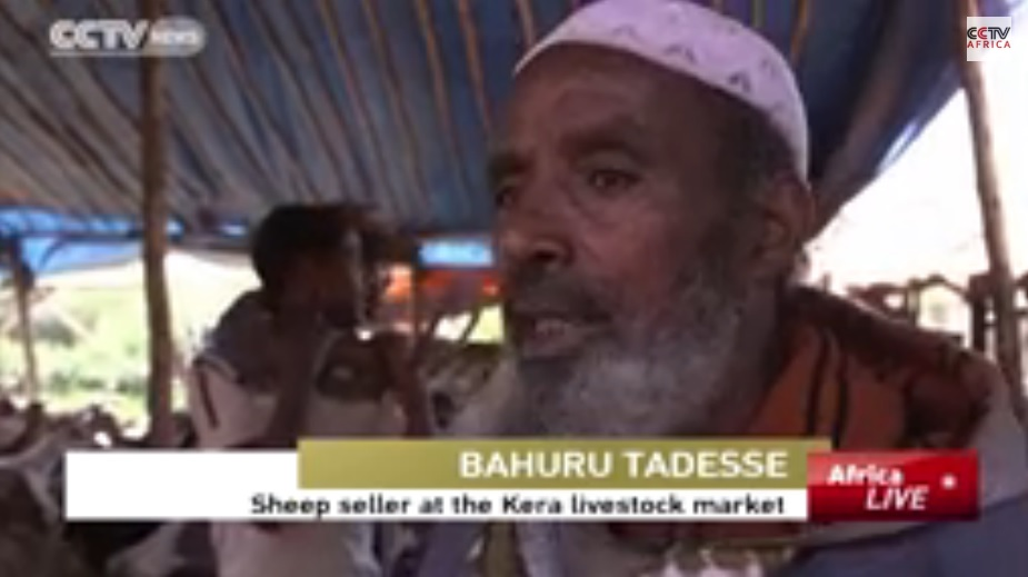 Ethiopians Hold To Old Traditions Of Buying Live Animals