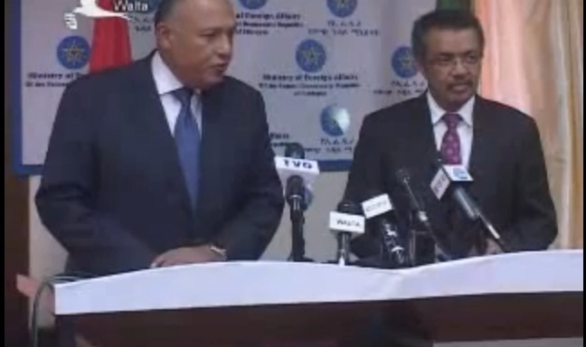 Ethiopian, Egyptian FMs joint press briefing