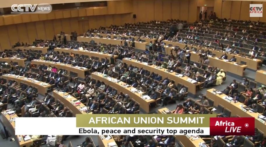 AU Summit Expectations - Ebola, Peace & Security Top Agenda