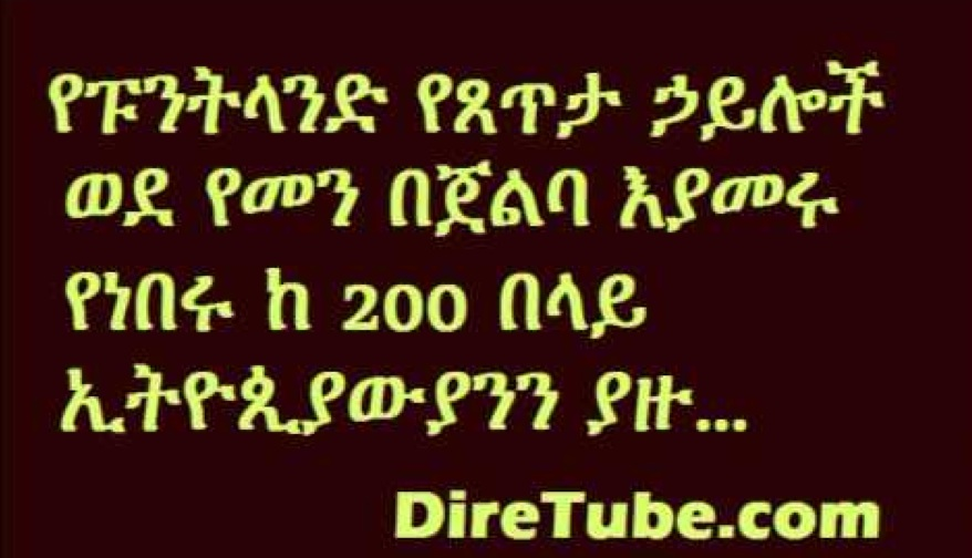 DireTube News - Puntland Security forces capture more than 200 Ethiopian Immigrants