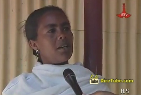 Ethiopian News - The Latest Full 8PM Amharic News - Jan 2, 2013