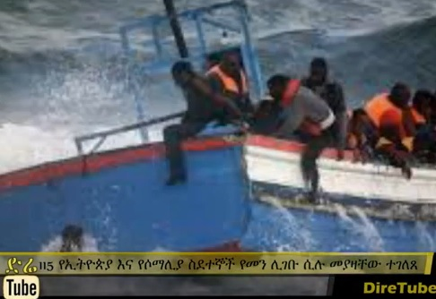 115 African Migrants Arrested while Attempting to Cross into Yemen