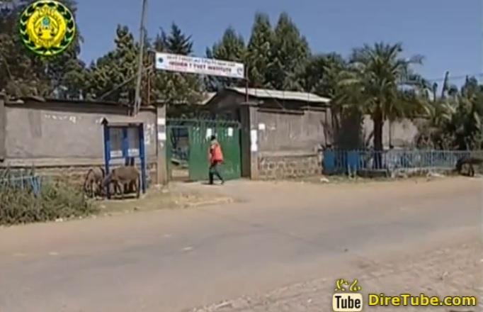 Men sentenced up to three years imprisonment for burglary