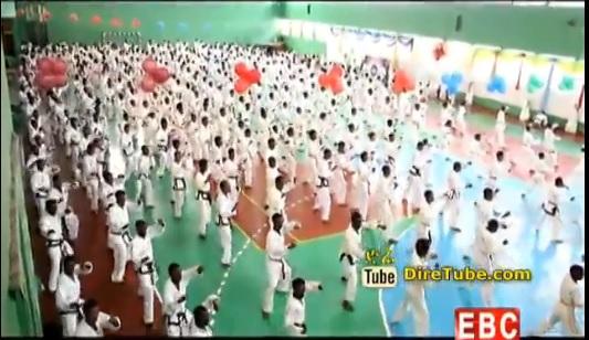 Mezenagna Sport - Marshal Art in Ethiopia