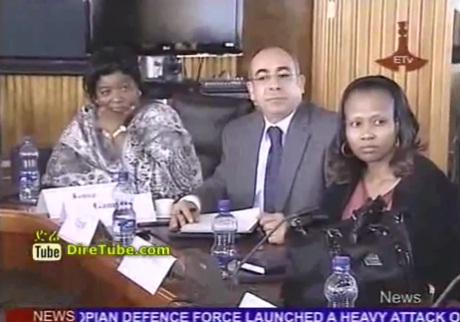 African Ambassadors Support Recent Ethiopian Attack on Eritrea
