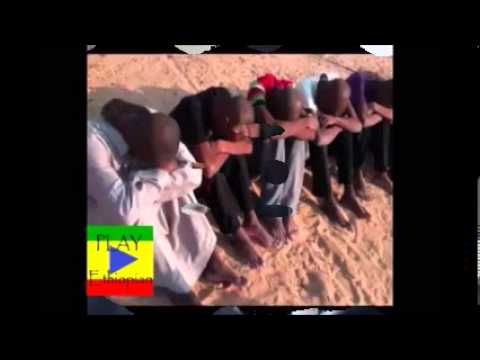 Shout For Ethiopian Prisoners in Saudi Arabia - Poem
