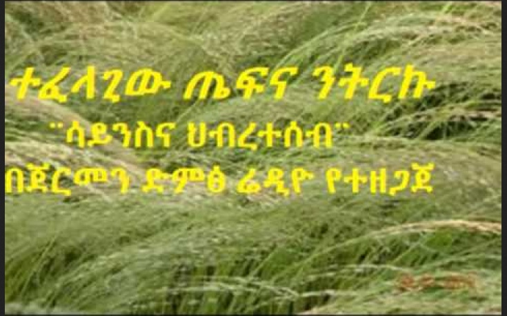 Ethiopia, Teff Genetics and Patent Who owns Teff?