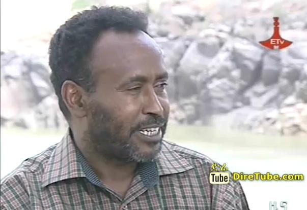 reporter in amharic
