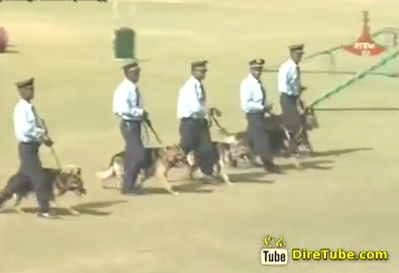 Addis Ababa Policies Controlling Drugs using Trained Dogs