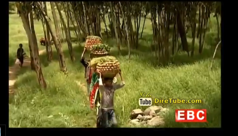 Mini Documentary - A visit to the Agame land of Tigray, Northern Ethiopia